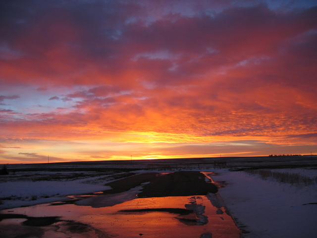 alberta-in-the-morning-1545274-640x480