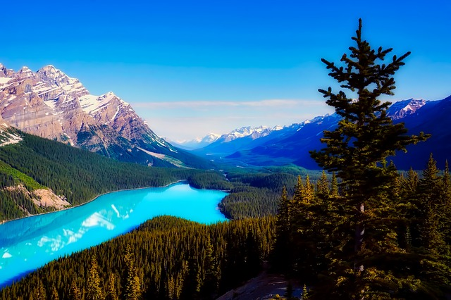 カナダへの移住について
